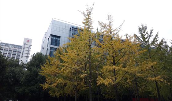 天津市工程建設行業企業發展逐漸向市外擴張